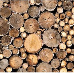 همه چیز درباره چوب